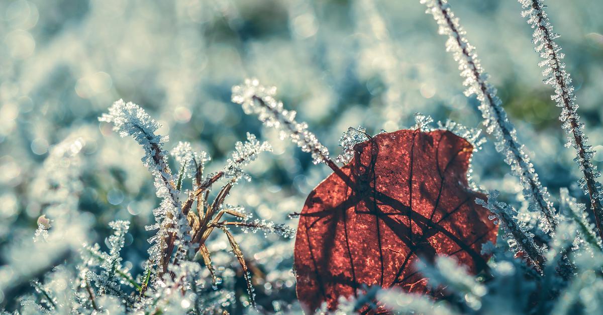 Schnee, Dauer-Frost, Eisnebel: Polarluft nimmt Deutschland in Kälte-Zange