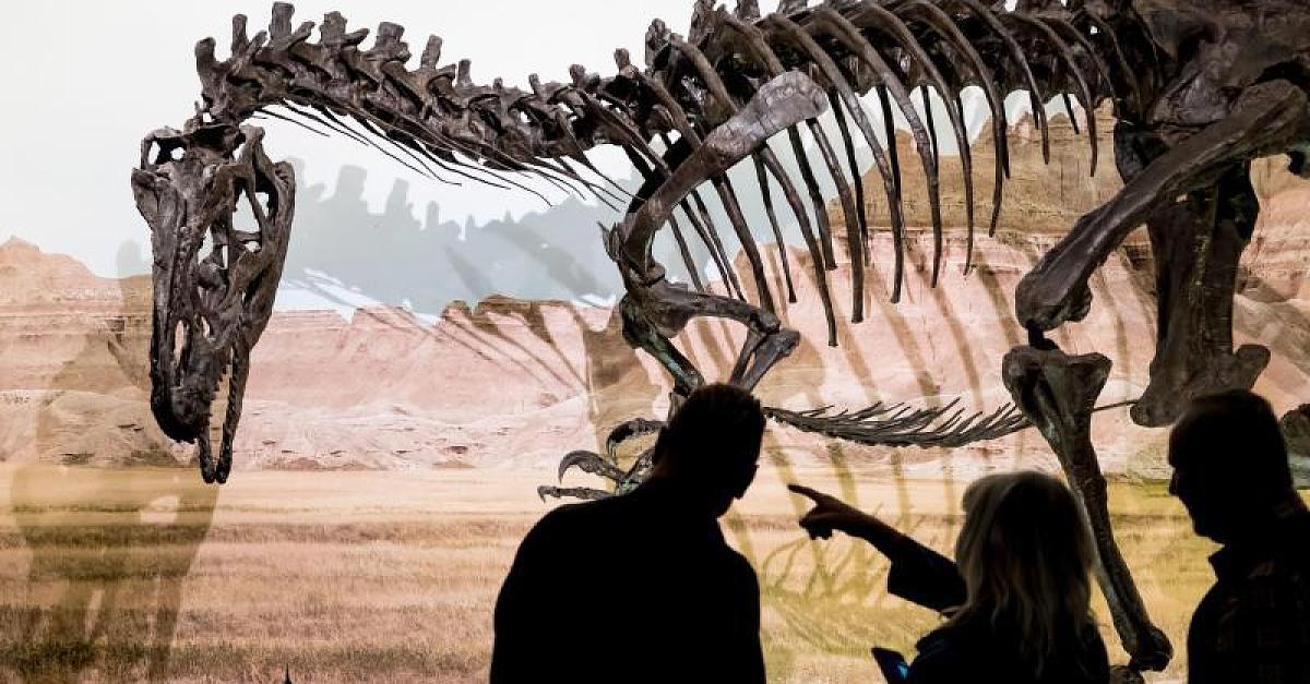 Forscher haben neue düstere Theorie, was Dionsaurier-Sterben auslöste