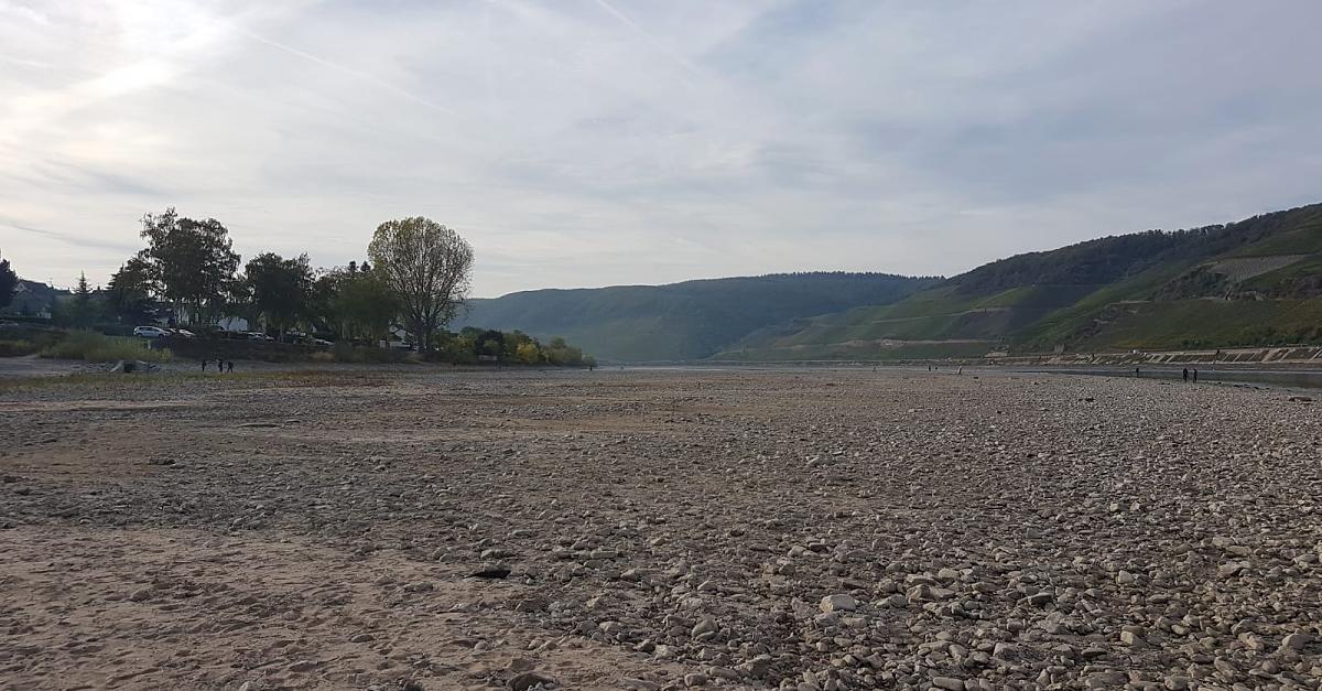 Pegel fällt auf 29 Zentimeter! Statt Schiffen fahren am Mittelrhein jetzt Jeeps und Motorräder
